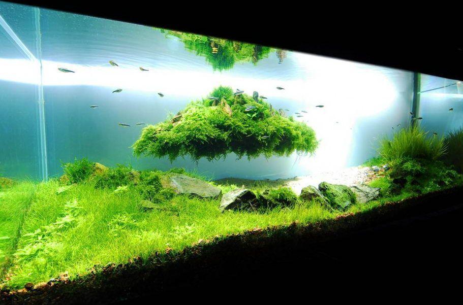Летающий остров в аквариуме своими руками