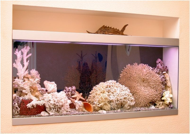 Стекло для аквариумов - проверенный временем материал.
